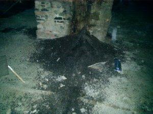 Bat Guano Pile in the Attic