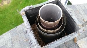 Bird nest under the chimney cap