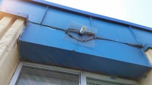 One Way Bat Door and Sealing